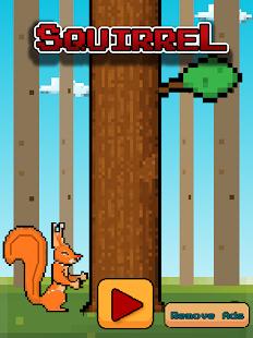Squirrel Survival Run