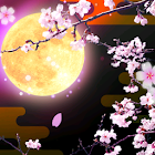 Cherry Blossoms at Night Trial icon