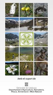 Alt Pirineu, deixa't guiar - screenshot thumbnail