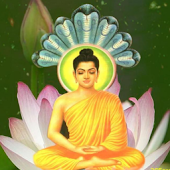 Buddhism Buddha Live Wallpaper
