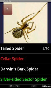 Name That Spider - screenshot thumbnail