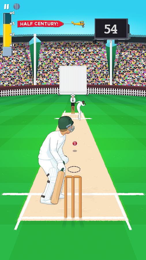 Mighty Cricket - screenshot