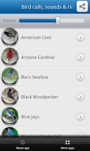 玩音樂App|鳥的聲音和鈴聲專業版免費|APP試玩