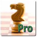 Chess Time Pro logo