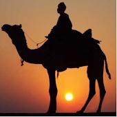 CamelCash