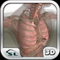 İnsan Vücudu Atlası icon