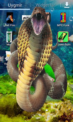 恶作剧吓唬蛇