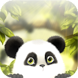 Panda Chub .. file APK for Gaming PC/PS3/PS4 Smart TV