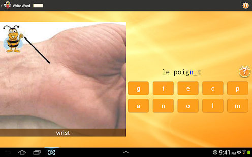 Learn French 6,000 Words - screenshot thumbnail
