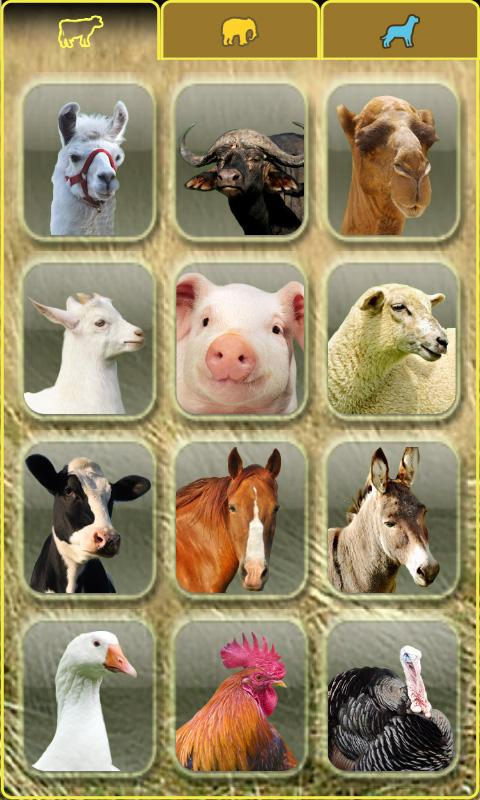 AniWorld free animal kids game - screenshot