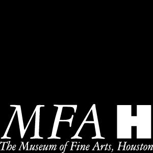 Art Museum Houston #14