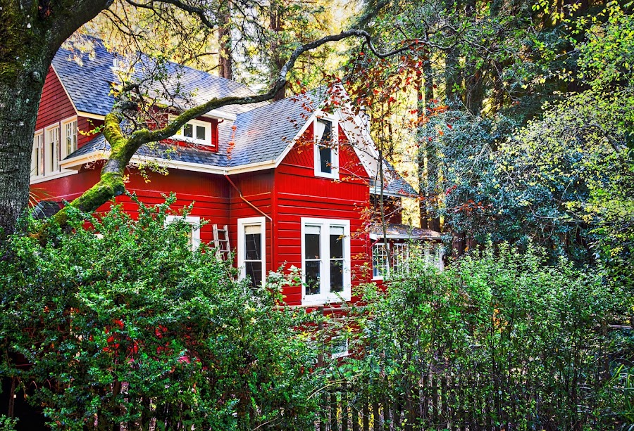 Red House in the woods by Diane Clontz - Novices Only Landscapes ( a beautiful day, peaceful, red house, vibrant, woods )