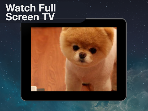 【免費生活App】Endless Pets: Watch TV-APP點子