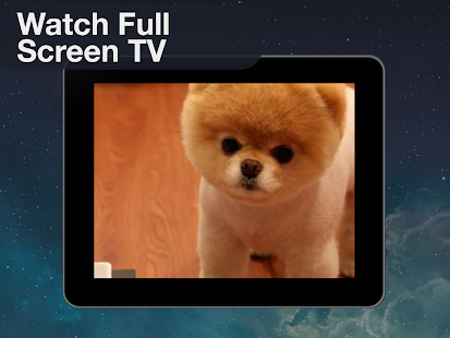 Endless Pets: Watch TV