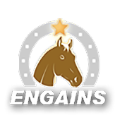 ENGAINS - Betting turf