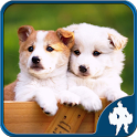 Dogs Jigsaw Puzzles icon