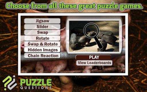 Pig Puzzle Games