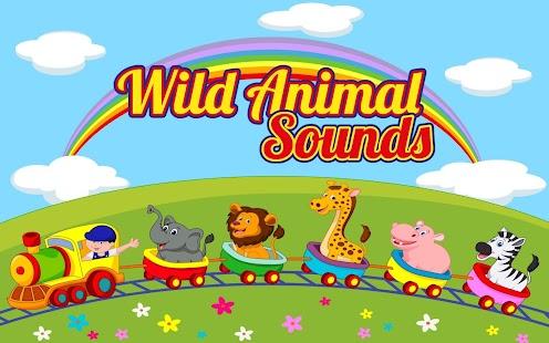 Wild Animal Sounds Quiz
