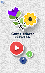 Guess-what-Flowers 6