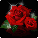 Love Flower Wallpaper icon