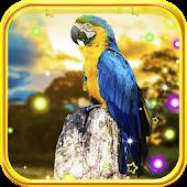 Parrot Summer live wallpaper