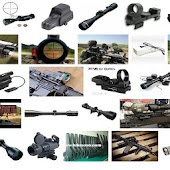 Gun Optics