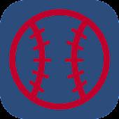 Lions Baseball Pro
