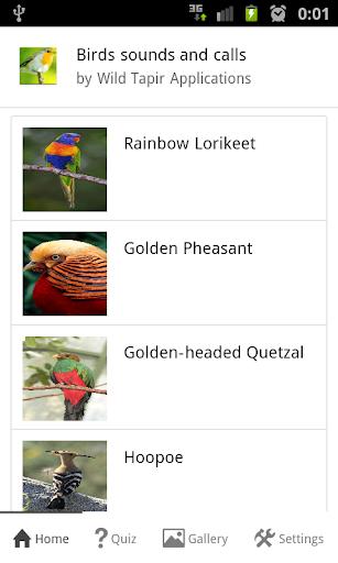 Bird Sounds and Calls