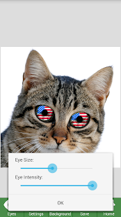 NiceEyes - Eye Color Changer - screenshot thumbnail