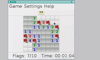 Screenshot of X Server