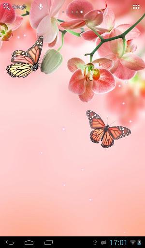 生日鲜花图片 - 背景图片下载 - 我图网