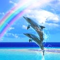 Dolphin Beats Free logo