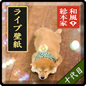 和風総本家/十代目豆助(冒険04)ライブ壁紙 icon