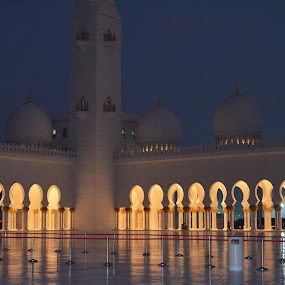 The White Mosque by Shelina Khimji - Buildings & Architecture Places of Worship (  )