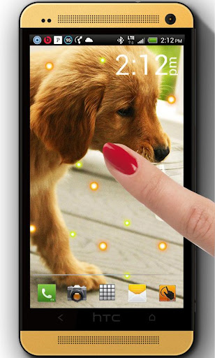 Puppy Pet HD live wallpaper