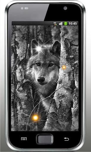 Wolf Free HQ live wallpaper