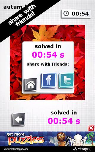 Thanksgiving Puzzles Pro