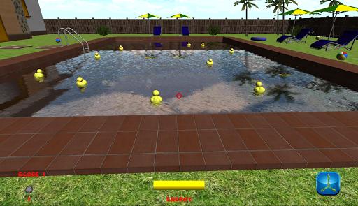 Pool Duck Hunt 3D
