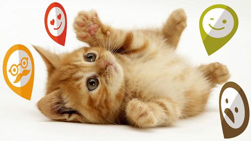 【免費攝影App】引脚图表情贴纸-APP點子