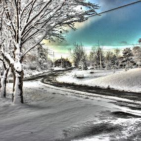 Light Dusting of Snow by Geoff Gosse - City,  Street & Park  Neighborhoods ( winter, newfoundland, hdr, snowy, neighbourhood )