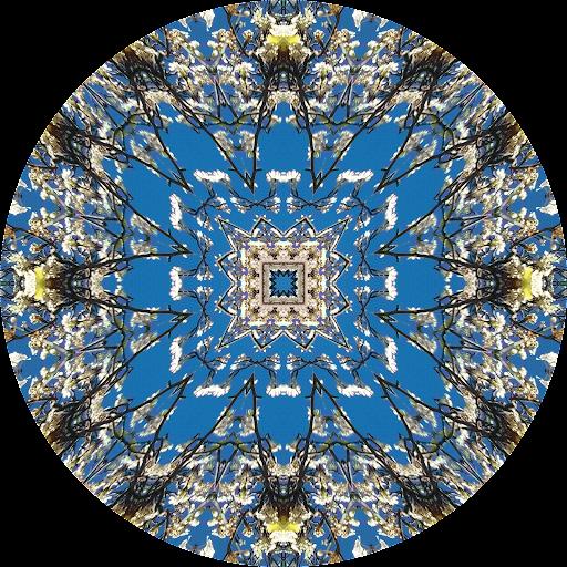 Kaleidagram - Kaleidoscope Cam
