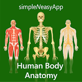 Human Body Anatomy by WAGmob icon