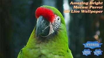 Screenshot of Amazing Bright Macaw Parrot
