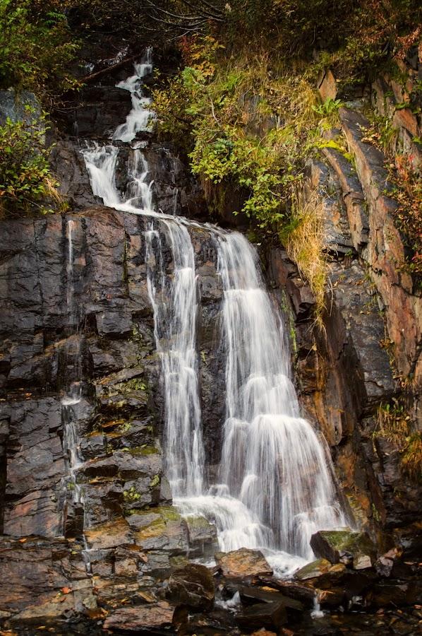 Waterfall by Kelli Harlow - Nature Up Close Water ( autumn, seward highway, fall, alaska, waterfall )