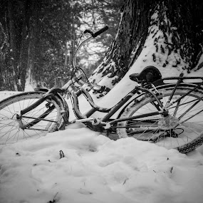 Abandoned Bicycle by Giles Perkins - Black & White Objects & Still Life ( canon, wheel, t3i, white, spoke, and, bike, red, nature, seat, snow, black, abandoned )