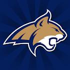 Montana State Bobcats icon