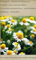 Screenshot of Herbal Healing for Everyone