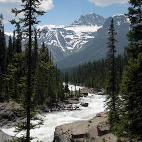Banff in summer by Sandra Woods - Landscapes Mountains & Hills ( water, canada, alberta, nature, banff national park, banff, river,  )
