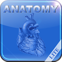 Human Anatomy II Lite icon