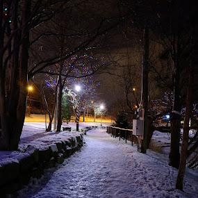 Park path 2 by Gordon Follett - City,  Street & Park  City Parks